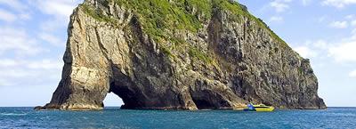 Cape Brett Half Day Cruise - Bay of Islands