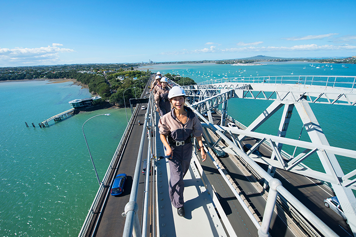 View from Auckland Harbour Bridge