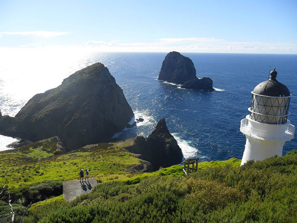 The Lighthouse at Cape Brett