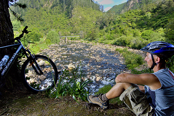 Mountain Biking Coromandel